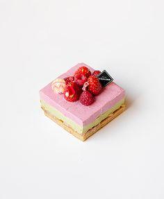苺とピスタチオの2層のムースタルト