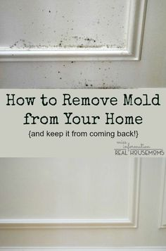 How to clean and remove mold from wood and walls and keep it from coming back, and it won't mess up your paint!