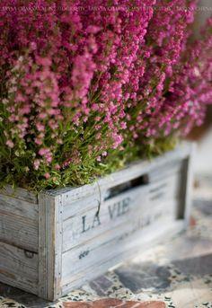 The Garden Verse - charmingspaces: Pinterest