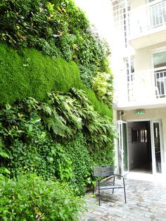 Hotel Jules and Jim, Paris 3 with a vertical garden realized by Jardins de Babylone