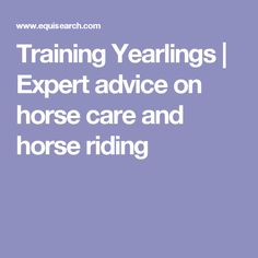 Training Yearlings | Expert advice on horse care and horse riding