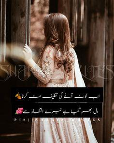 Urdu Poetry 2 Lines, Words, Horse