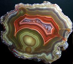 Laguna Agate. Photo by Bill The Eggman
