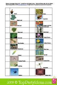 Image result for nature hunt list