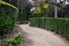 Jardin des Plantes   Flickr - Photo Sharing!