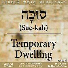 Sue_kah (Hebrew)- Temporary Dwelling