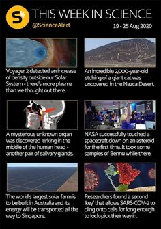 This week in science...