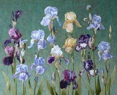 Composition with irises by Roman Reisinger