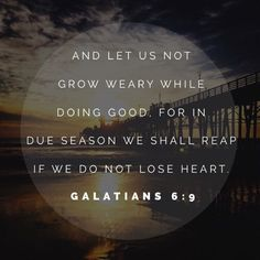 """""""And let us not grow weary while doing good, for in due season we shall reap if we do not lose heart. Galatians 6:9"""""""
