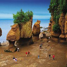The Bay of Fundy (Canada) is renown for having the highest tides on the planet metres or 53 feet). People walking on the ocean floor at Hopewell Rocks in New Brunswick. Photo: New Brunswick Tourism and Parks Nova Scotia, Hopewell Rocks, Voyage Canada, East Coast Travel, Voyager Loin, Destinations, Parcs, Canada Travel, Canada Tours