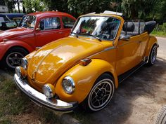 volkswagen classic cars for sale - Classic car list Vw Beetle Cabrio, Vw Cabrio, Beetle Bug, Royce Car, Best Muscle Cars, Cute Cars, Vw Beetles, Car Car, Old Cars