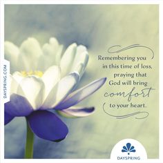 with sympathy quotes condolences Thinking Of You Quotes Sympathy, Sympathy Quotes For Loss, Sympathy Card Messages, Condolence Messages, Sympathy Wishes, Loss Quotes, Sympathy Gifts, Condolences Quotes, Sending Prayers