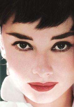 Audrey Hepburn #celebrities