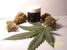 cannabis-oil-and-cancer Dosage Information: How to take cannabis oil