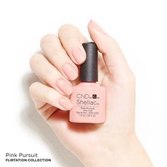 CND™ SHELLAC™ Brand 14+ Day Nail Color in the shade Pink Pursuit, Summer 2016 Flirtation Collection.