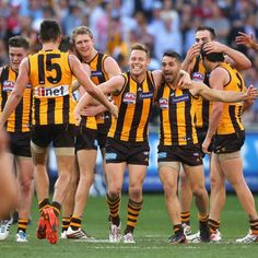 Hawks players celebrate winning the 2014 AFL Premiership. (Photo by Quinn Rooney/Getty Images) Australian Football League, World Of Sports, Winter Sports, Hawks, Finals, Sydney, Club, Melbourne Australia, September