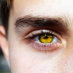 gold eyes // yellow eyes // yellow eyed boy // teen wolf