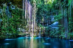 Sacred Blue Cenote : Ik Kil Cenote, Yucatán, Mexico  Ik Kil is a well known cenote outside Pisté in the Municipality of Tinúm, Yucatán, Mexico, It is located in the northern center of the Yucatán Peninsula and is part of the Ik Kil Archeological Park near Chichen Itza. It is open to the public for swimming and is often included in bus tours