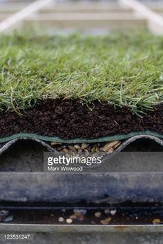 Green Roof Section View | Stock Photo : Creating a living roof - a cross section of a green roof
