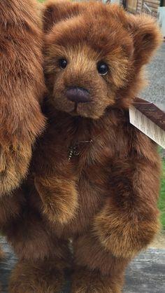 Grizzly Bear Cub, Bear Cubs, Plush Animals, Felt Animals, Teddy Bear Cartoon, Old Teddy Bears, Teddy Bear Pictures, Teddy Toys, Charlie Bears