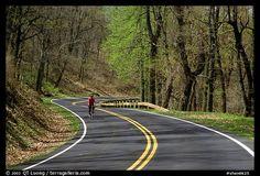 Bicyclist on Skyline drive. Shenandoah National Park, Virginia, USA.
