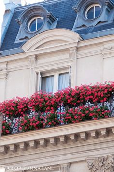 Parisian Architecture Paris Balcony, Balcony Garden, Balcony Flowers, Balkon Design, Beautiful Paris, Belle Villa, Paris Photography, Paris Apartments, Windows