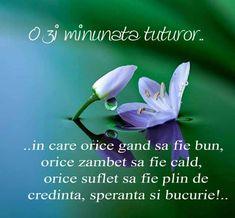 Phonetic Alphabet, God Prayer, Live Your Life, Live For Yourself, Good News, Good Morning, Prayers, Herbs, Buen Dia