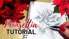 How to draw Poinsettia Christmas flowers step by step. I'll show you the drawing process from sketching to shading and details. This is a greyscale drawing s. Christmas Sketch, Christmas Drawing, Free Coloring Pages, Coloring Books, Creative Arts And Crafts, Drawing Process, Christmas Flowers, Watercolour Tutorials, Pencil Drawings
