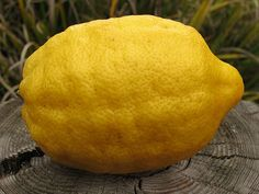 Citron. As oppose to a lemon.