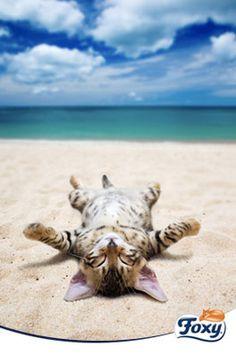 """Decía John Steinbeck que """"El arte del descanso es una parte del arte de trabajar"""". Llega el mes de vacaciones por excelencia, ¿cómo las vas a aprovechar?"""