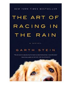 Summer Reading List: The Art of Racing the Rain by Garth Stein  #dogs #books #favoritebooks #summerreading #animallovers #GarthStein #novels #funreads