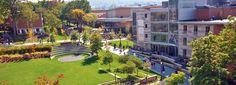 campus - Google 搜索