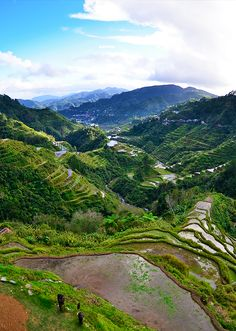 Banaue Rice Terraces: an iconic heritage of the Philippines. Discover the facts on this majestic landscape & how you can travel to this wonder of the world!   via http://iAmAileen.com/travel-guide-picture-perfect-banaue-rice-terraces/ #travel #Philippines
