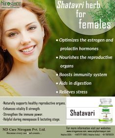 According to Ayurvedic scriptures, Shatavari (Asparagus racemosus), is being used for centuries to support the reproductive system and digestive system of females. #Ayurveda #nirogamusa #Navdeep Sharma #ompharma