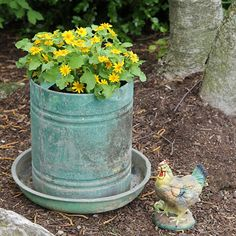 Repurpose a vintage chicken feeder as a planter with a great patina.