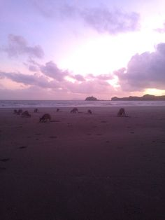 Sunrise in Cape Hillsborough, Queensland