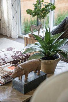 Gardener Dale Kanetschka provides tips on caring for ailing plants on HGTV.com.