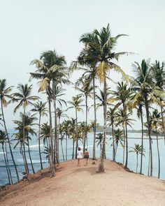 Mirissa, Sri Lanka ↠ Follow us https://www.instagram.com/p/BhttzCFnY9G/