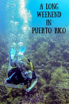 From scuba diving to visiting a rain forest to learning about history, there are so many things to do in Puerto Rico. Check out this great Puerto Rico itinerary for an epic weekend.