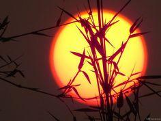 O sol com aro vermelho