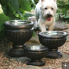 Put dog bowls in planters for a nicer look, on the patio, in the kitchen, or wherever your dog dines.