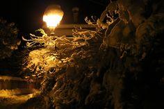 Let it Snow by Gaia Leonardis  on 500px