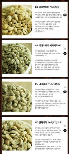 다크브릭스 생두 1kg : 다크브릭스 Coffee Study, Coffee Lab, Coffee Shop, Coffee Bean Tree, Coffee Beans, Coffee Cookies, Easy Coffee, Cool Cafe, Coffee Roasting