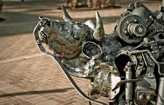 Bull Rider by Willie Bester on UV Campus.  Photograph by Martie Venter