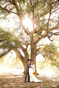 Circle Oak Ranch provides the perfect backdrop for your rustic wedding http://www.circleoakranchweddings.com/