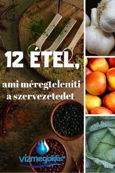 Fitt, Cantaloupe, Paleo, Health, Health Care, Beach Wrap, Paleo Food, Salud