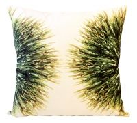 Rubber Sponge Scatter From Weylandts RSA Weylandts, Scatter Cushions, House, Ideas, Home, Haus, Houses, Throw Pillows, Decor Pillows