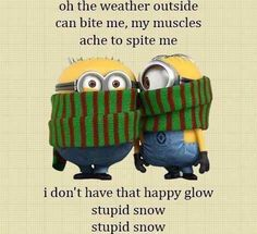 For all my friends who are cussing me for loving all the snow lol Week End Humour, Funny Signs, Funny Jokes, Funny Sarcasm, Funny Cartoons, Minion Pictures, My Minion, Minion Humor, Evil Minions