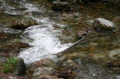 Djurdjevo brdo, reka Ratajska kod Manastira Pustinja Fish, Rivers, Outdoor, Outdoors, Pisces, River, Outdoor Games, The Great Outdoors, Lakes