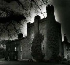 Skyrne Castle, Co. Meath - Built in the 12th century, it is haunted by several ghosts including a woman who was brutally murdered in the castle in the 18th century. It is said that her screams can be heard in the dead of night.